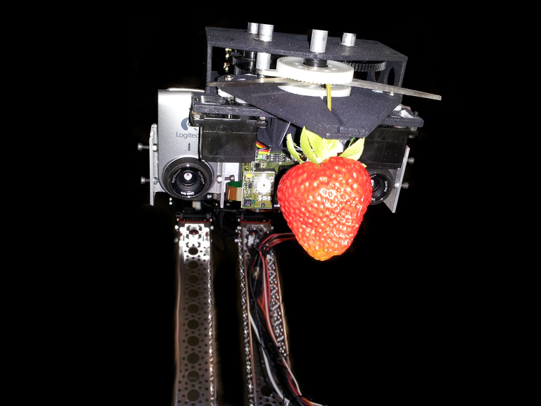 Introducing the Adev S-1 strawberry-harvesting robot